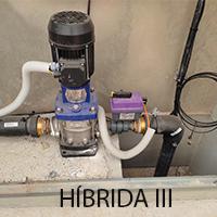 hibrida III